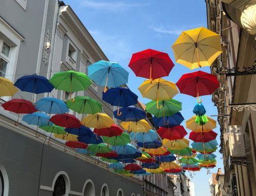 Weekendowe atrakcje w Lesznie